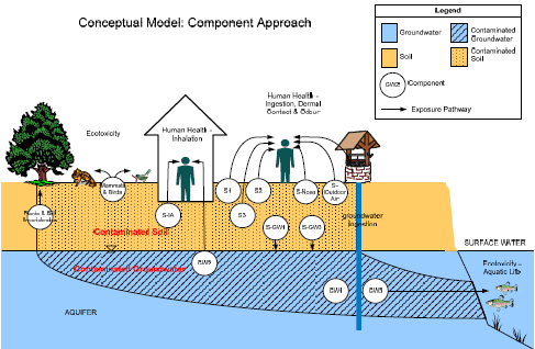 Environmental rist assessment model